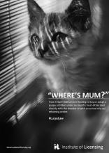 Wheres Mum? Cat1